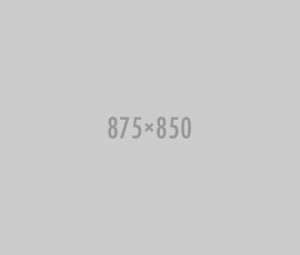 875x850